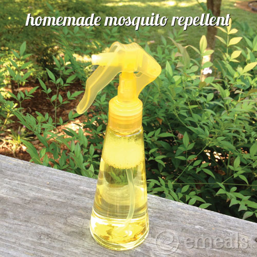 Ways to Save: Homemade Mosquito Repellent