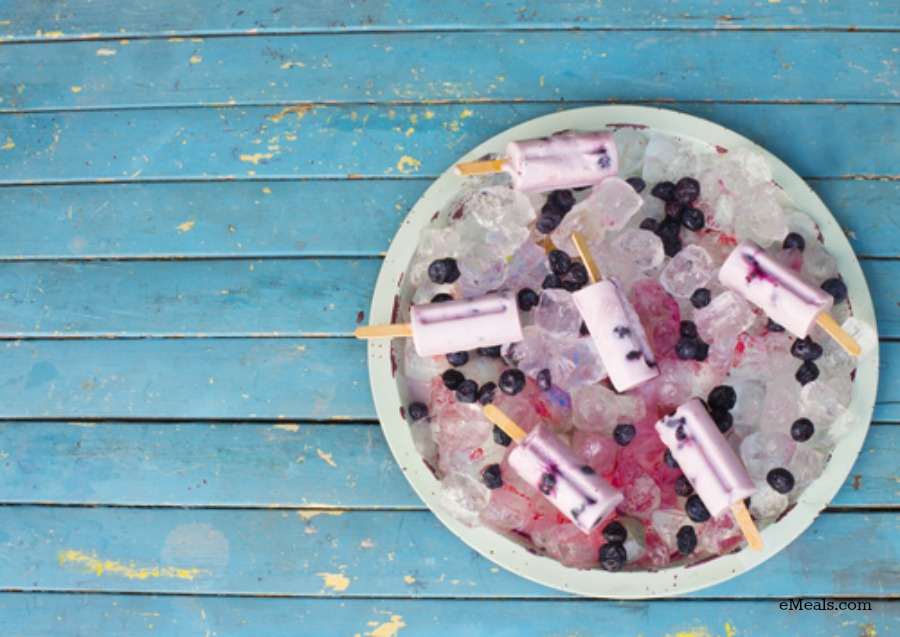 Organic Blueberry Coconut Popsicle