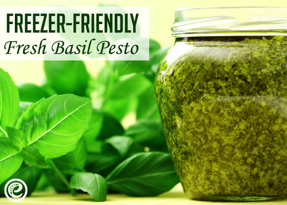 Freezer-Friendly Fresh Basil Pesto