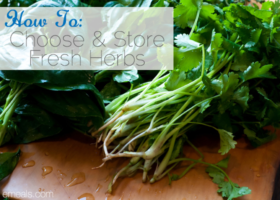 How to Choose and Store Fresh Herbs