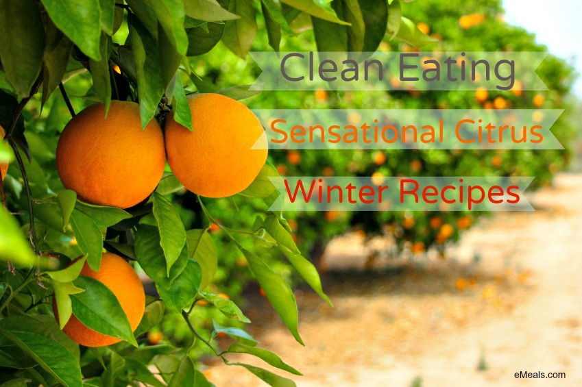 Clean Eating Citrus Recipes