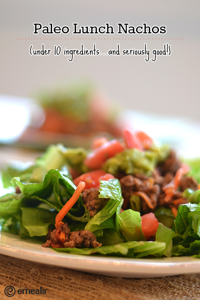 Paleo Lunch Nachos | eMeals #eMealsEats #aldeskowitheMeals