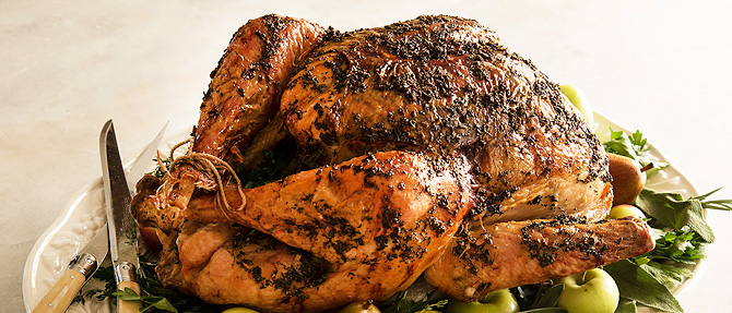 The Easy Way to Cook a Turkey